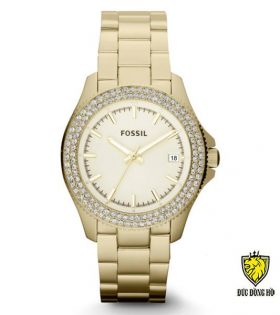 Fossil Nữ-AM0018